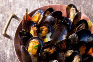 fresh mussels with white wine