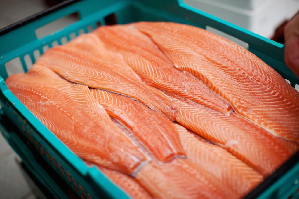 fish_large